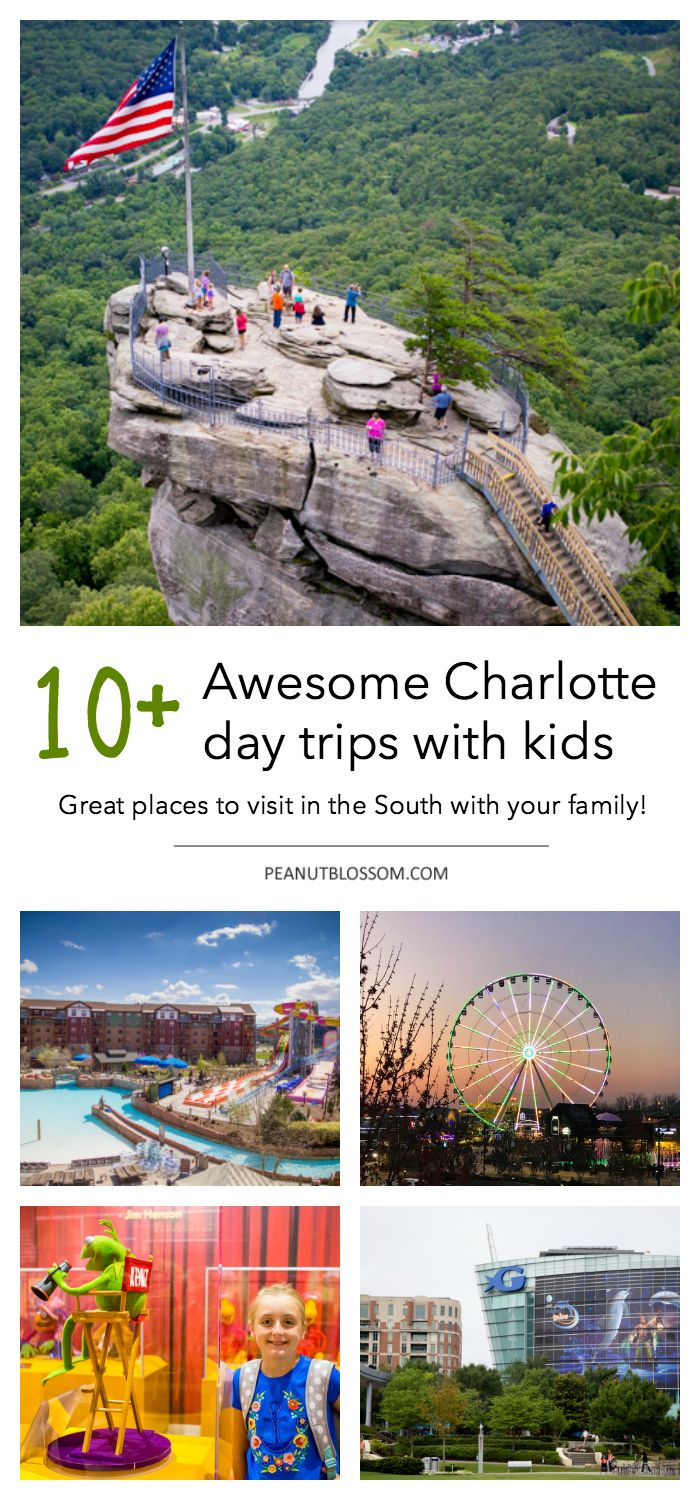 Things For Kids To Do In Charlotte Welcome New Residents Things To Do In Charlotte With Kids The