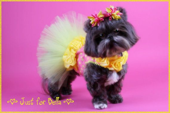 Too cute! Those darling little bows just set it off.