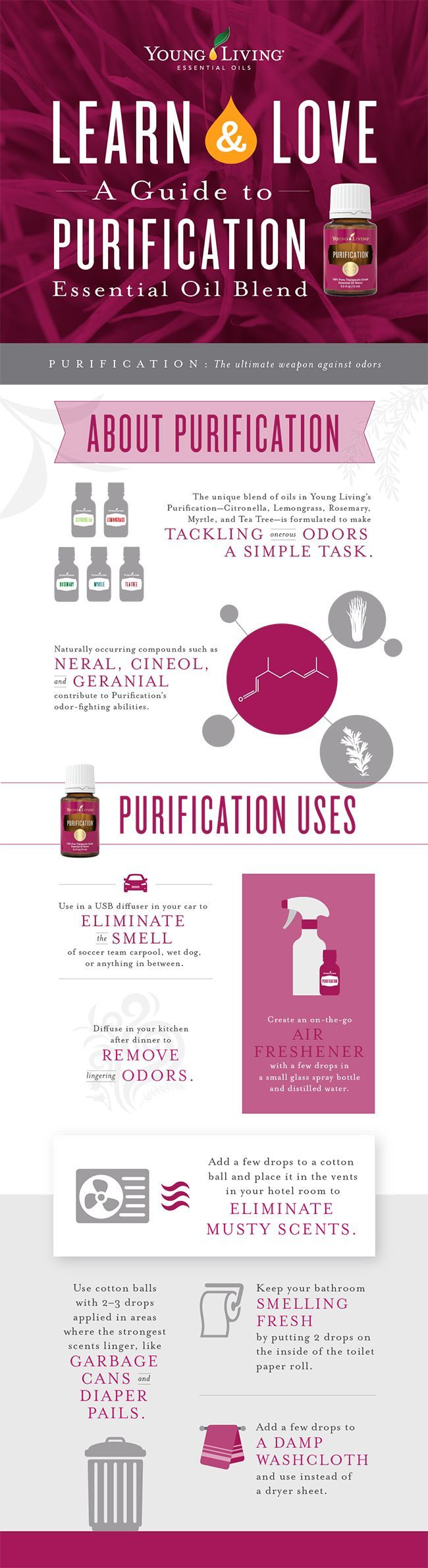 Follow us on Pinterest for more essential oil goodness! Purification essential oil on the Young Living blog! One of the oils I go through the most of. Health and wellness. How to use essential oils.