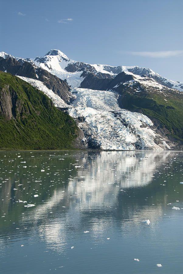 ✮ Vasser Glacier - Alaska