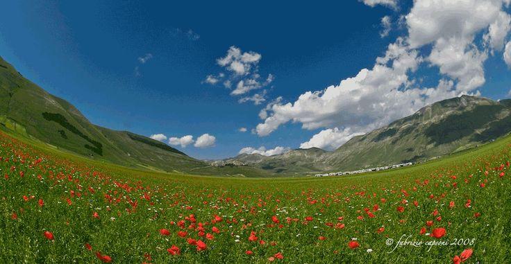 Castelluccio di Norcia, Foto © Capsoni