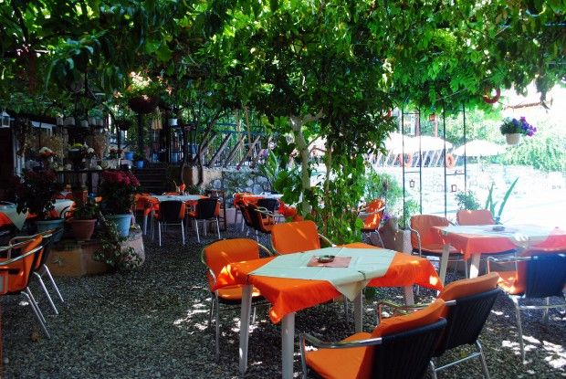 The perfect place to relax in #Benitses #Corfu under the shade of the #olivevines  #poolside #gardenvines