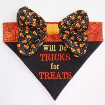 Need this for Splinter's first halloween!
