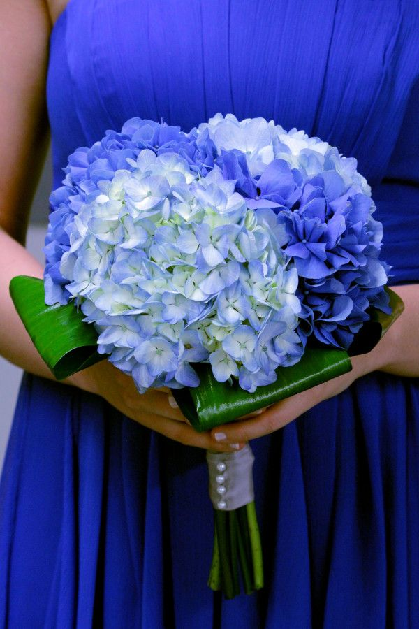 wedding flowers blue hydrangias | Deep Blue Wedding Maid of Honor Bouquet; Dark & Light Blue Hydrangea ...