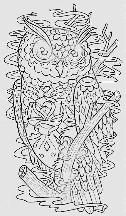62 best Owl coloring pages images on Pinterest Owls, Mandalas and - copy baby owl coloring pages for adults