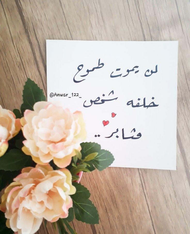 لن يموت طموح خلفه شخص مثابر Feeling Positive Words Quotes Arabic Love Quotes