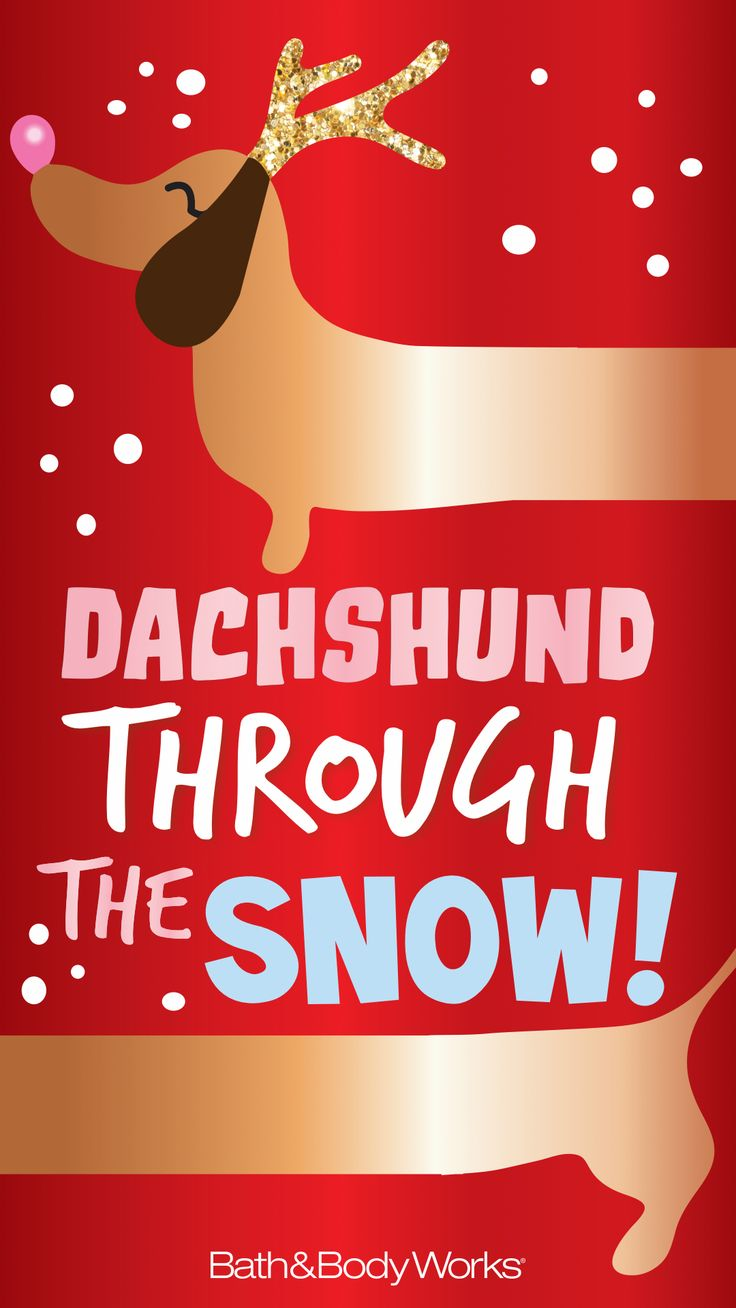 Bath & Body Works iPhone Wallpaper Dachshund through the Snow