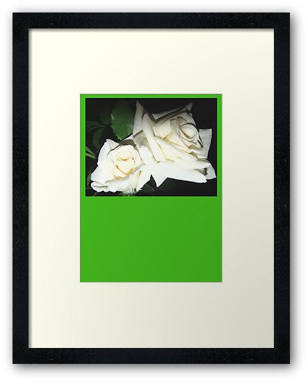 PlatinePearl, white roses on ArtStack #platinepearl #art