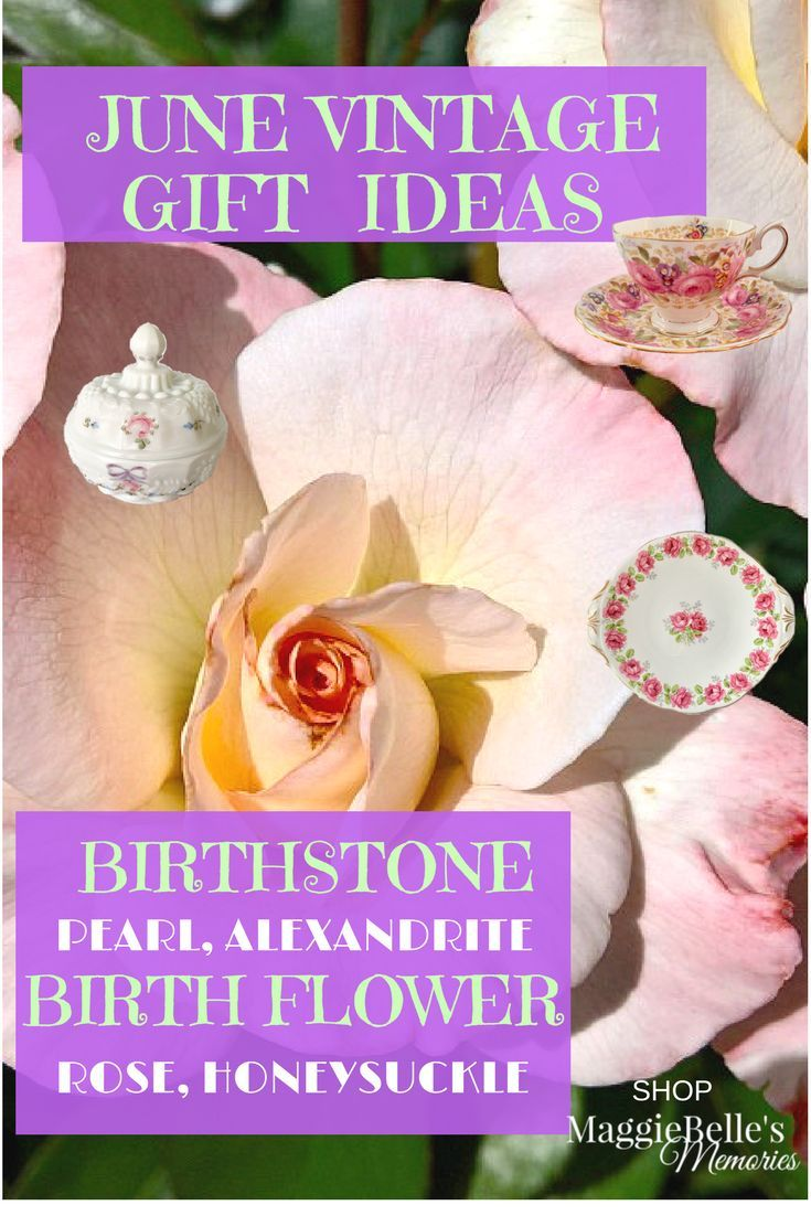 Looking for a unique gift idea for teacher appreciation or a june looking for a unique gift idea for teacher appreciation or a june birthday find antique and vintage items to match her birthstone in porcelain izmirmasajfo