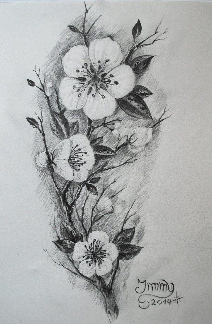 Pin By Pratistha Dhakal On Pencil Sketch Cherry Blossom Tattoo Blossom Tattoo Flower Drawing