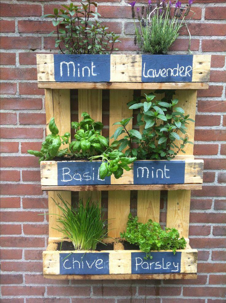 Mijn kruidentuintje aan de muur in eigen tuin pinterest love this tuin and herbs - Terras tuin decoratie ...
