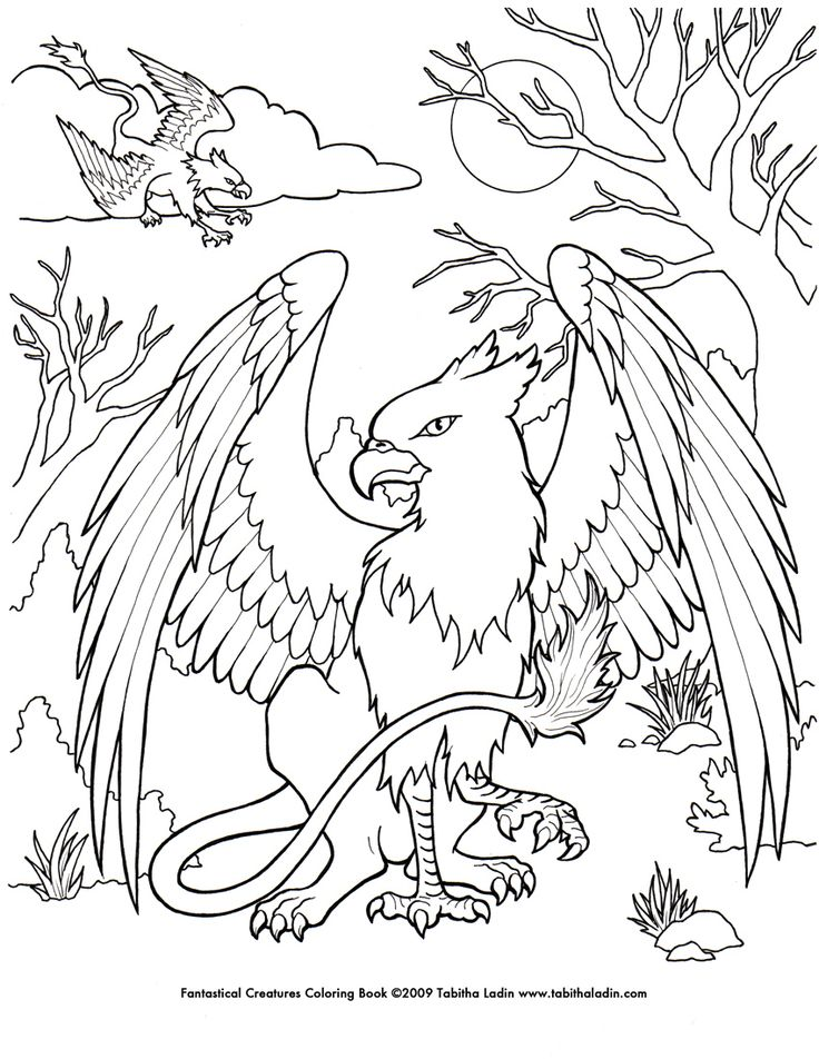 image detail for griffin coloring page by tablynn on deviantart
