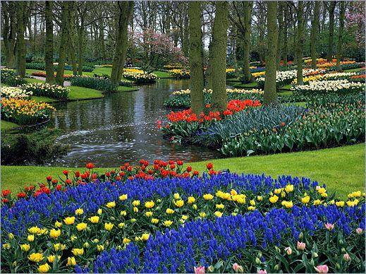 10 asombrosos lugares en el mundo cuenta regresiva 7 jardines keukenhof holanda paisajes - Jardines de tulipanes en holanda ...