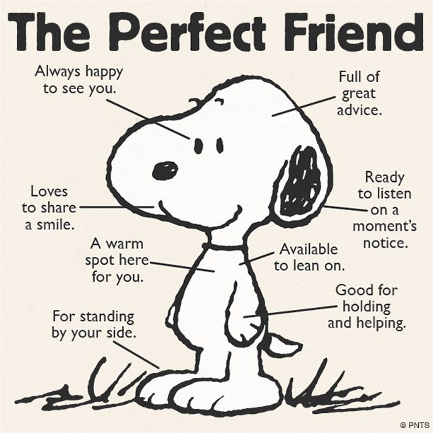 About the Happy Dog - The Perfect Friend 最佳好友                                                                                                                                                      More                                                                                                                                                     More