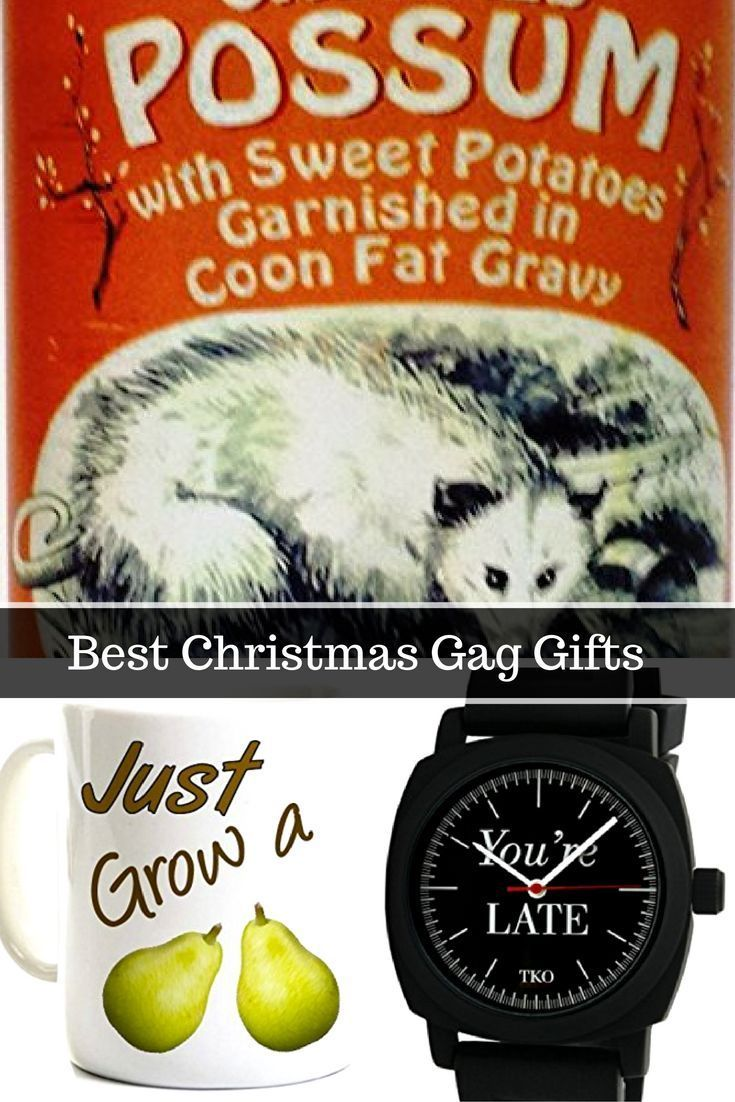 The best gag gifts for Christmas are gifts that not only bring laughs but also have a purpose.  In fact the best gag Christmas gifts will bring laughs with each use the gift.  Best Gag Gifts for Christmas
