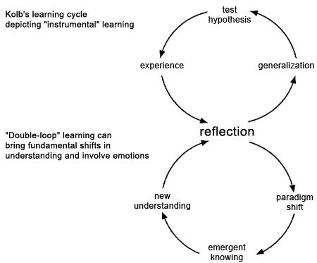 Reflection on Theorists/Theories