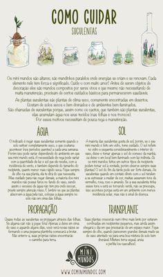 Sabe como cuidar das plantas suculentas que tem em casa? Deixamos-lhe algumas…