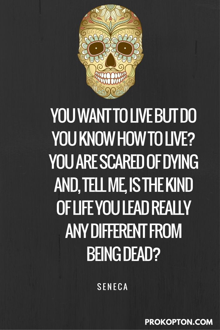 Philosophers Quotes On Life Best 25 Funny Philosophical Quotes Ideas On Pinterest