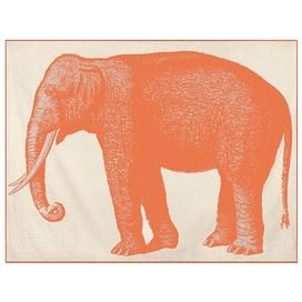 Thomas Paul Elephant Throw
