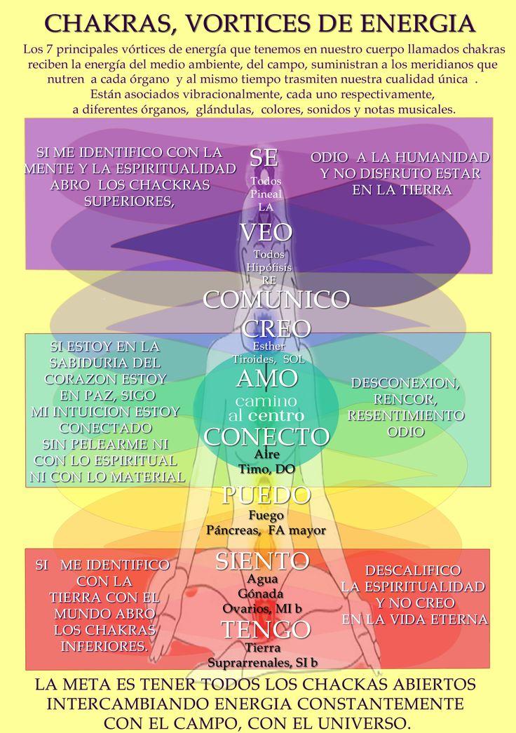 Cada chakra está asociado a una parte del cuerpo, a una glándula, a una nota musical, a un elemento y a un color. A través de estos siete vórtices de energía compartimos ondas de luz viva de diferente frecuencia y amplitud que emanan nuestra información personal, nuestra arquitectura interna espiritual que la conforman nuestras experiencias, deseos, sentimientos, intenciones y nuestros pensamientos conscientes e inconscientes. Los chakras emiten nuestra característica única e irrepetible, en…