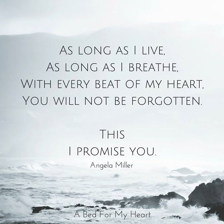 You will not be forgotten. This I promise you