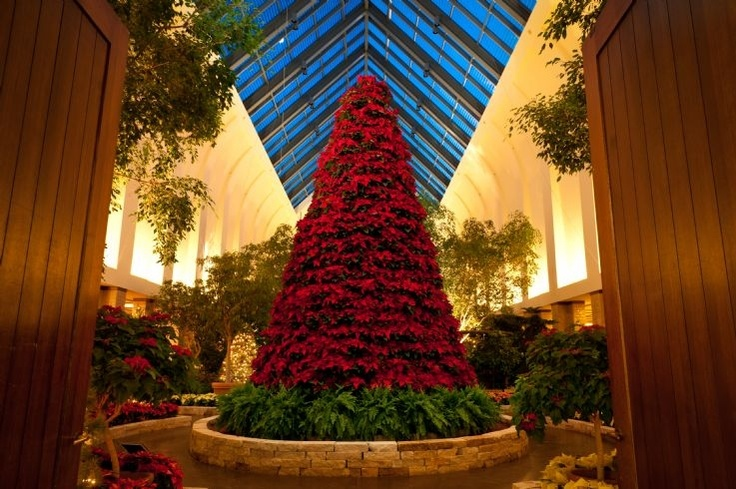 25 Best Winter Amp Holiday Events At Member Gardens Images