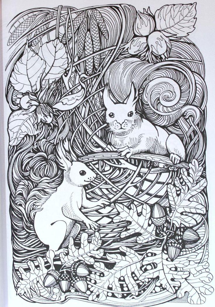 Amazon.com: Manic Botanic: Zifflin's Coloring Book (9781523692057): Zifflin, Irina Vinnik: Books