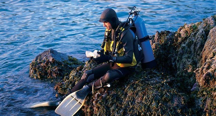 Scuba Diving magazine ranked British Columbia's waters as offering the best diving in North America. Diving in BC was also named to National Geographic's 2014 Ultimate Adventure Bucket List. #exploreBC #scubadivingquotesunderwater #scubadivingquoteshilarious