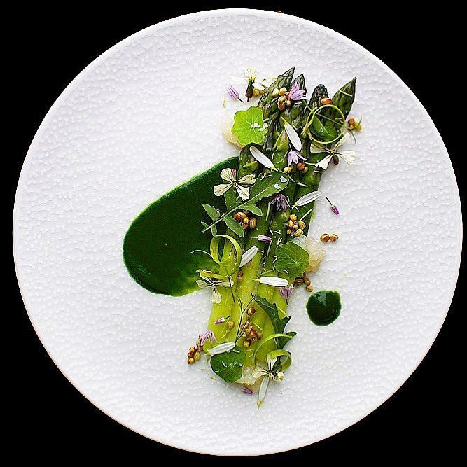 """419 Likes, 8 Comments - World's Finest Food Plating (@gourmetartistry) on Instagram: """"Edgar Farms Asparagus with Wild Plants, Onion Pearls and Parsley Purée   Garnish includes: Pine…"""""""