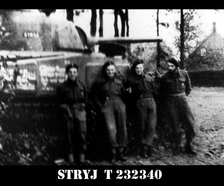 Sherman OP ,,STRYJ'' T - 232340