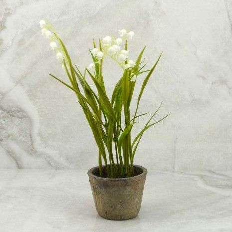 Lily of the Valley in Clay Pot - Other Accessories - Accessories & Gifts - Gifts