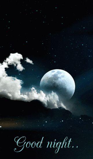 ✿⊱❥ Good night!