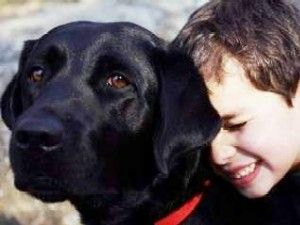 Guide dogs for autistic childrenGuide Dogs, Autism, Helpful Children, Autistic Children On, Dogs Schools, Service Dogs, Guide Eye, Schools Guide, Children Parents Special Ne