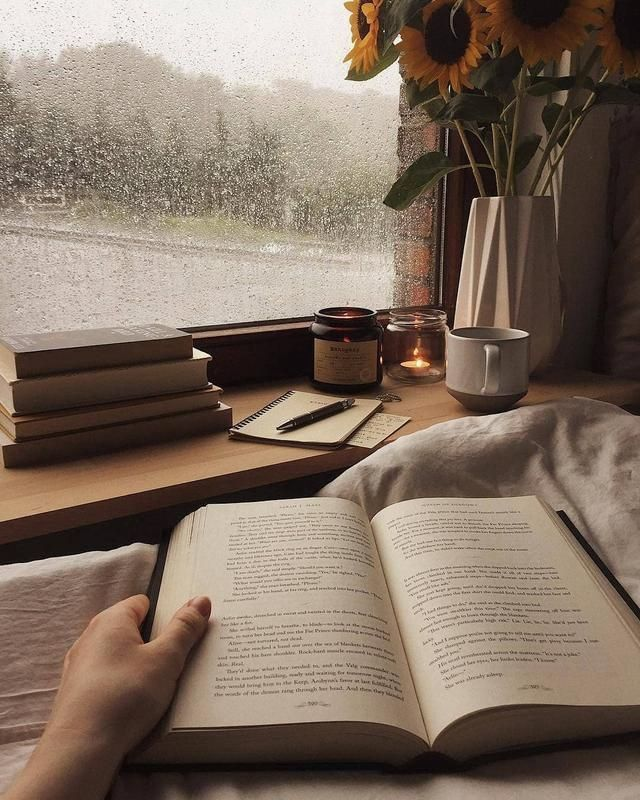 Do you also love reading? in 2021 | Book aesthetic, Brown aesthetic, Cozy  aesthetic