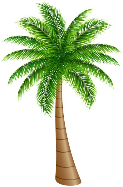 Palm Tree Large PNG Clip Art Image                                                                                                                                                                                 More