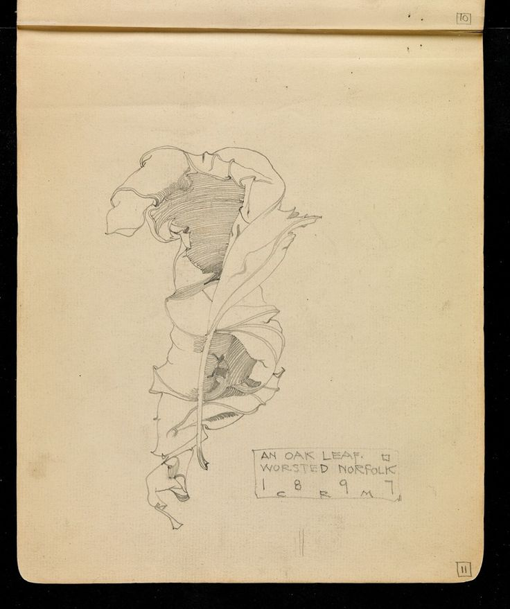 Hunterian Art Gallery Mackintosh collections: GLAHA 53014/5