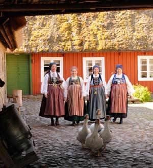 From Skåne, Sweden