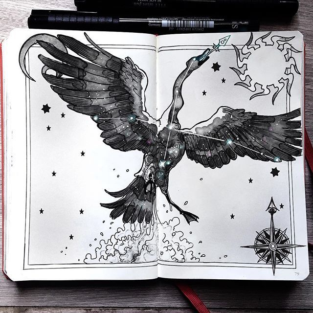 """Cygnus, """"the swan"""" constellation. - ⭐️""""Cygnus is a proud constellation that rules the northern hemisphere of the sky; the Milky Way is her river of choice to travel. She's also keeper of Pisces arrows.""""⭐️"""