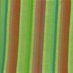 Multi stripe green
