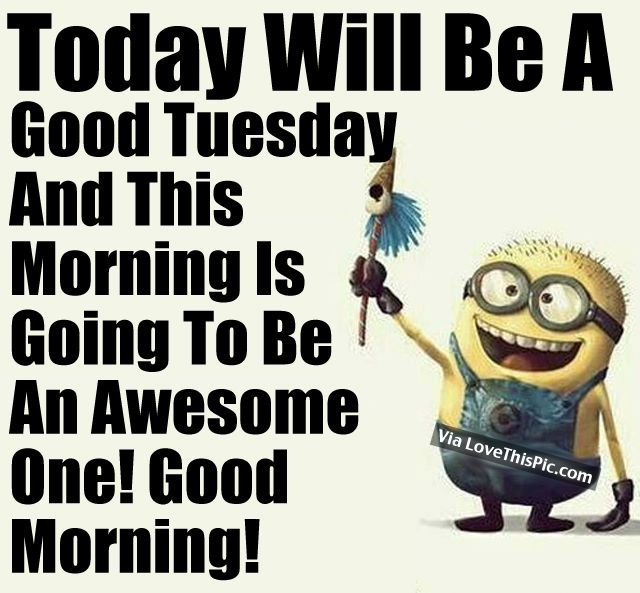 Today Will Be A Good Tuesday And This Morning Is Going To Be An Awesome One! Good Morning!