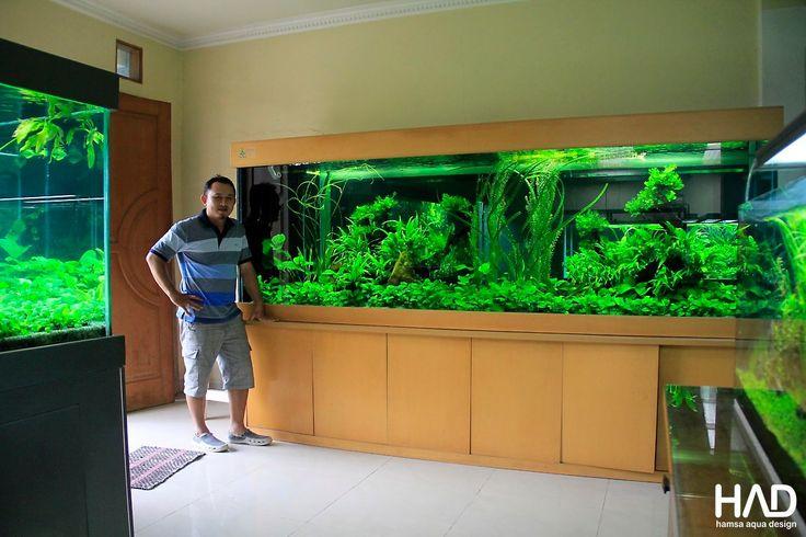 pin von jessica hotham auf fish stuff pinterest. Black Bedroom Furniture Sets. Home Design Ideas