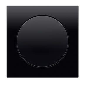 Hager Berker R.3 black light switch