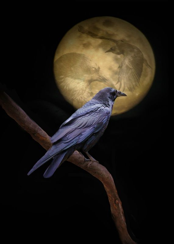 the ancestors watch over us in many ways ~ night and day