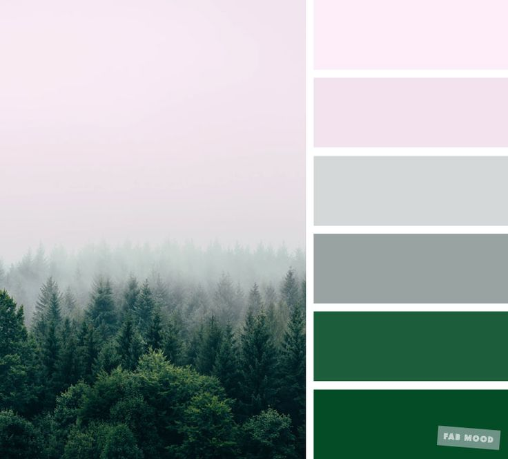 Best 25 blush color palette ideas on pinterest pink for Olive green colour combination