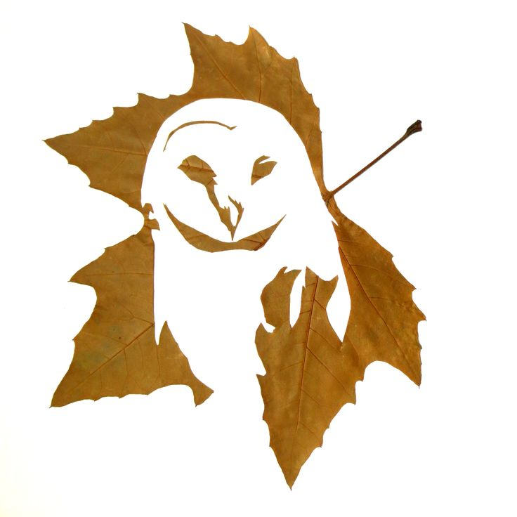 Fine Oddity - Owl made from hand cut leaves