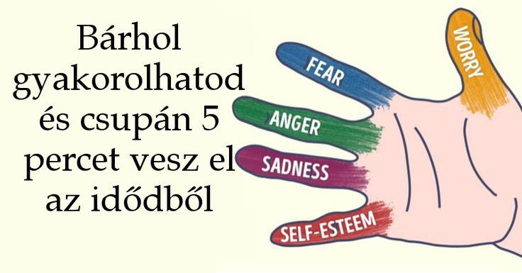 A kutatók szoros kapcsolatot fedeztek fel a krónikus stressz és a különböző testi és lelki betegségek között, mint a hányinger, hányás, szorongás, magas vérnyomás, depresszió, stroke, szívroham, gyenge immunrendszer és más komoly betegségek. Sajnos a stressz napjainkban a normál életmód velejárója és nagyban növeli az egészségi problémák kockázatát. Ha nem[...]