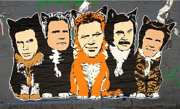 Street Art, Hansky: Will Ferrell Cats: Street Artists, Graffitistreet Art, Ferrell Cat, Feral Cat, Art Hanksi, Artsy Fartsi, Street Smart, Streetart, Hanksi Ferrell