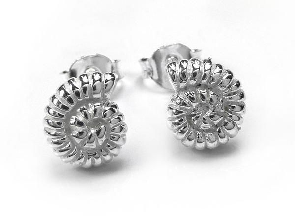 Silver Earrings - Ammonite