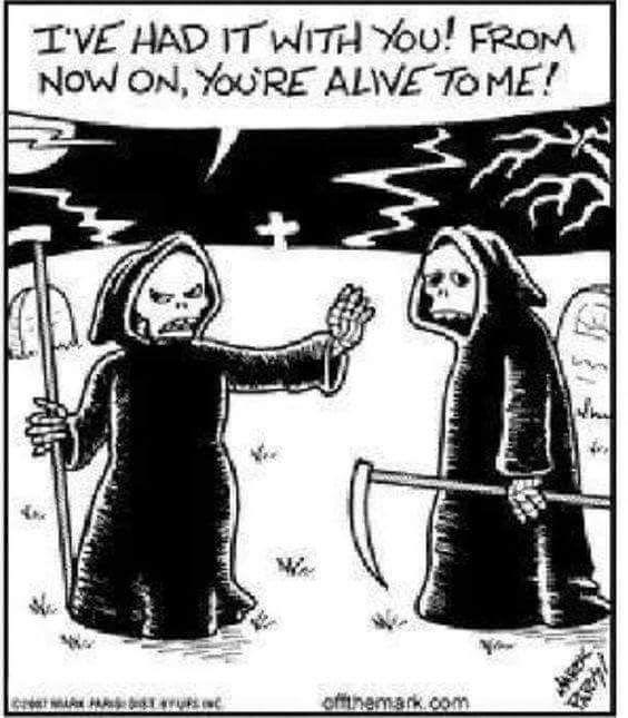 even death can be humorous - Halloween Humor Jokes