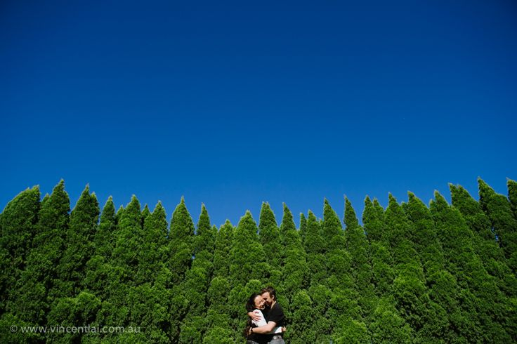 Arc Of Pines Prewedding Wedding Photography